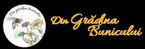logo-din-gradina-bunicului-+-TXT
